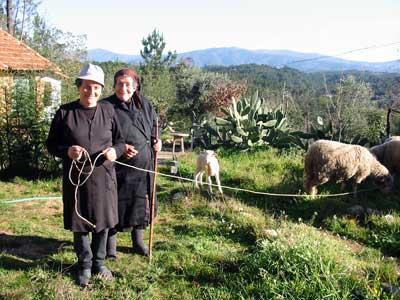 Piedade en Inocência met hun schapen