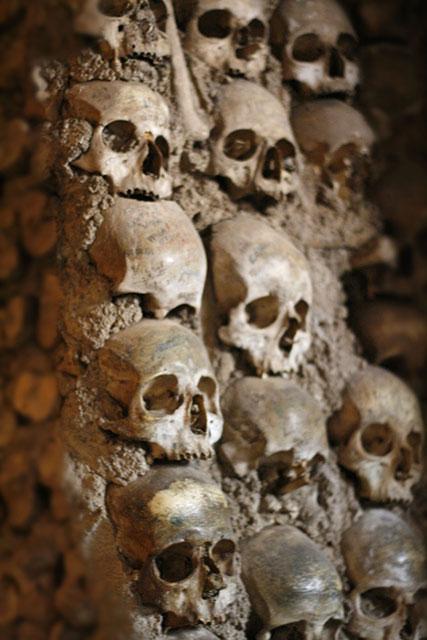 Detail van schedels