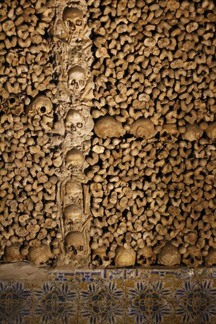 Patroon van schedels en botten