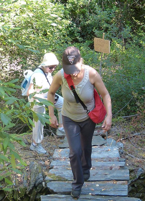 Deze brug is speciaal voor de wandeling getimmerde van boomstammetjes. Op het bordje staat: 'Verboden voor meer dan 80 kg'.