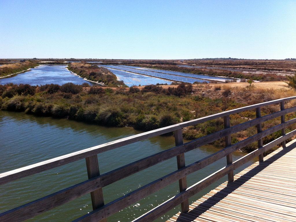 Fietspad langs zoutmijnen bij Tavira (Algarve)