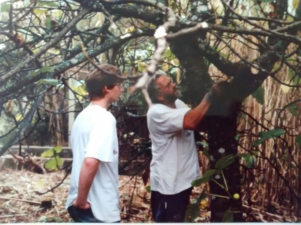 Vader en zoon bevrijden de achtertuin van bramen