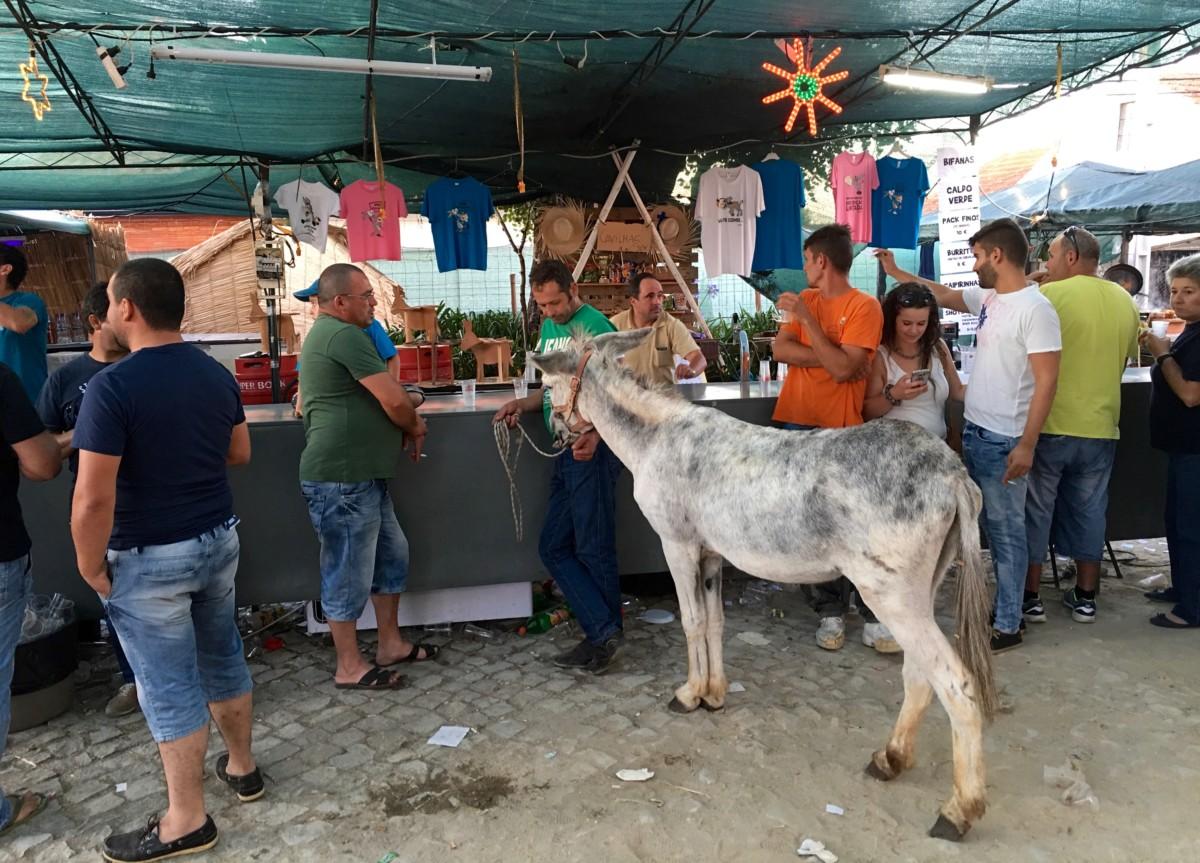 Nade ezelrace staat een man met zijn ezel aan de bar