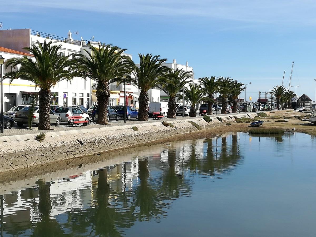 Santa Luzia het havenfront met huizen en een rij palmbomen langs het water.