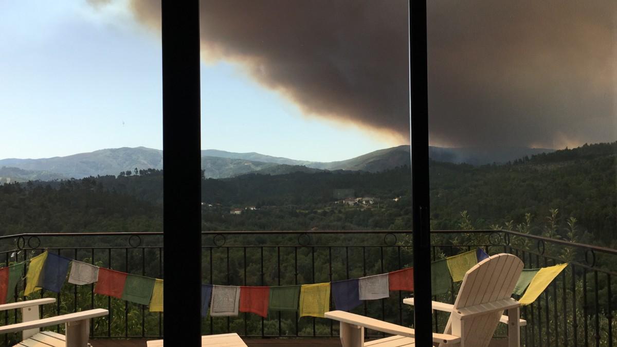 uitzicht op zwarte rook door bosbrand