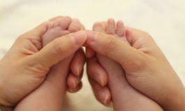 voeten en handen