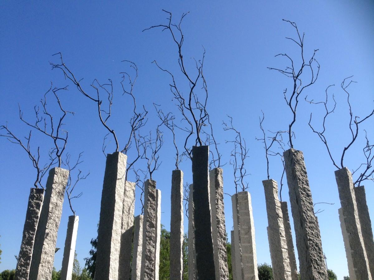 Sobre A Floresta, 2012 van Alberto Carneiro