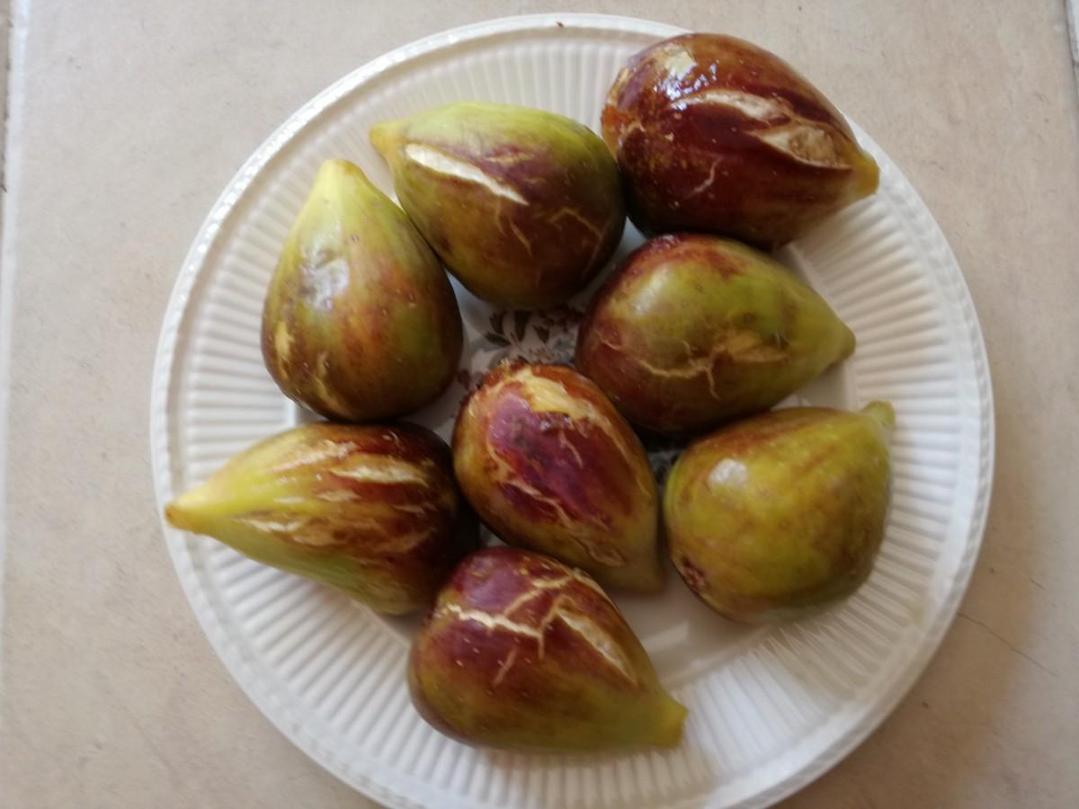 Bordje met rijpe vijgen met een paars-groene kleur.