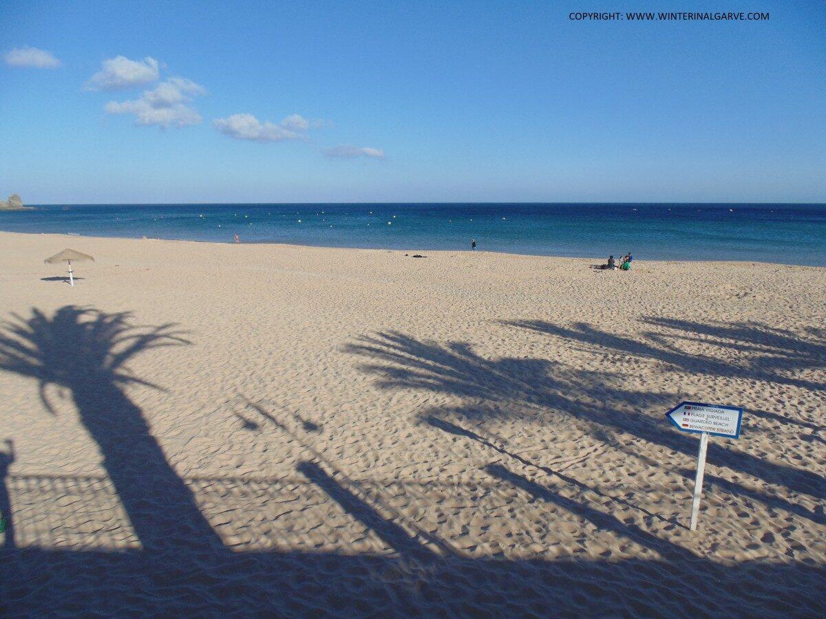 Lange winterschaduwen van palmbomen op een zonning maar vrijwel verlaten strand.