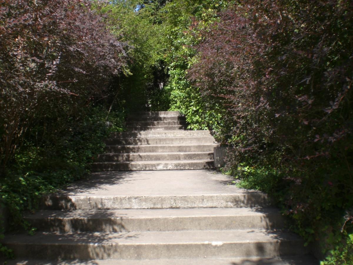 Trap in de tuin van het Gulbenkian museum in Lissabon