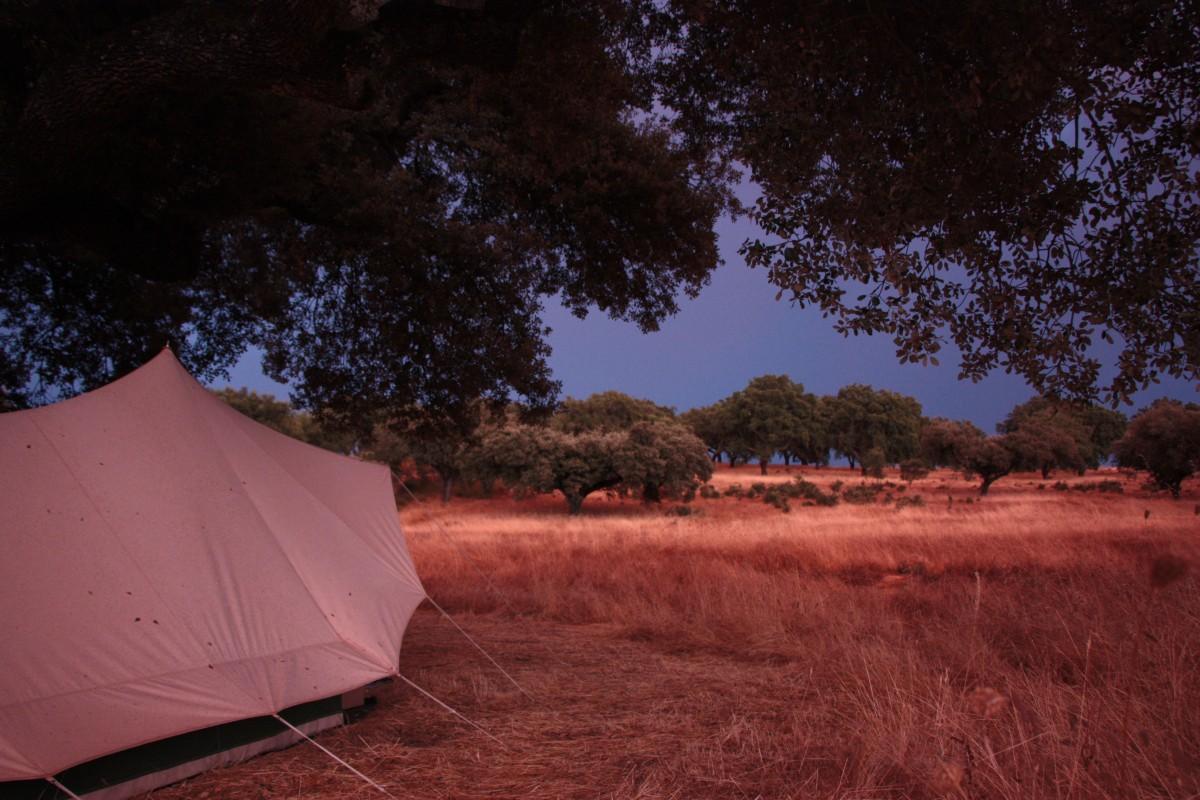De avond valt over het kampeerterrein