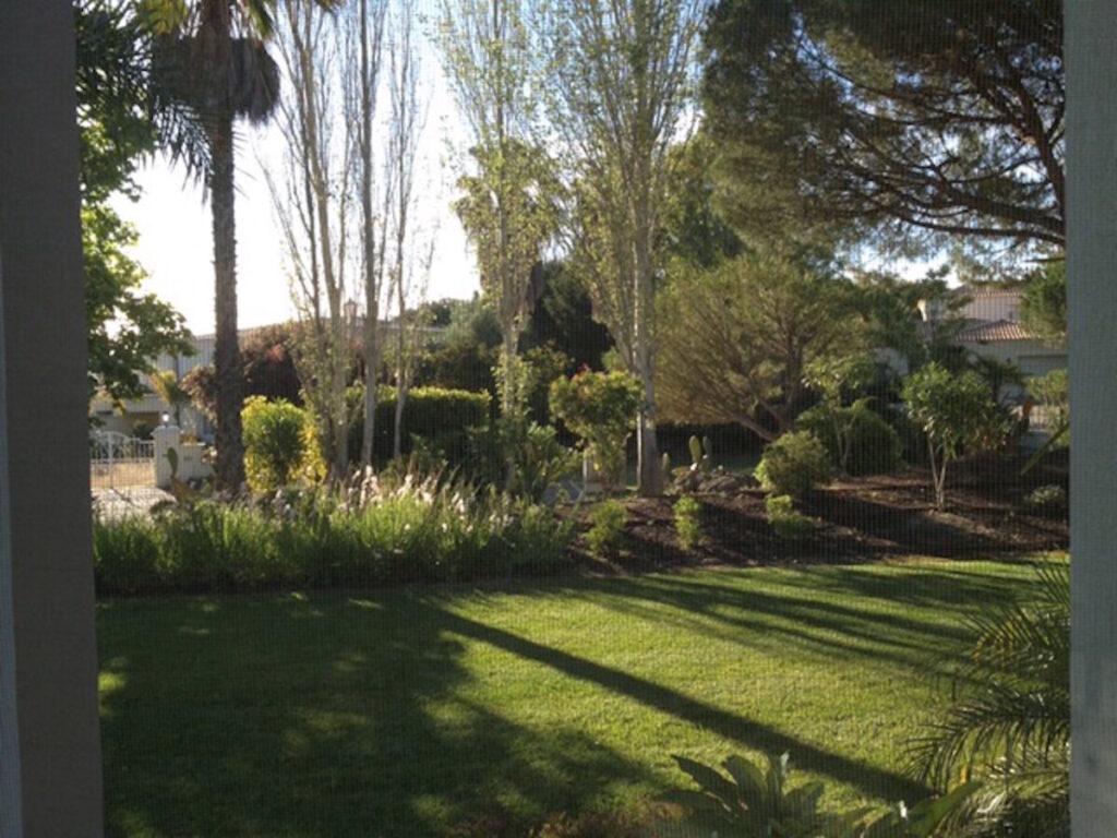 Foto van een groen uitzicht.
