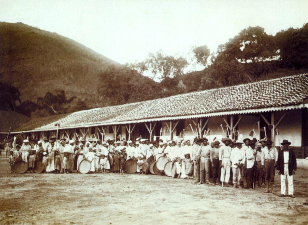 Slaven op een koffieplantage