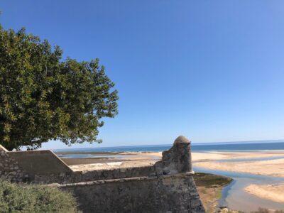 De verzanding van de kustlijn